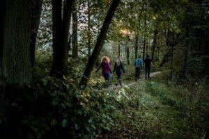 Impreza integracyjna w plenerze w lesie